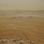 El desierto lejano. 1993. Óleo / tabla 114 x 146 cm.