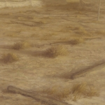 El desierto cercano. 1994. Óleo / tabla 60 x 180 cm