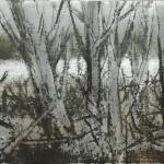 Bosque de ribera. 2005 . Técnica mixta / zinc 23 x 51 cm.